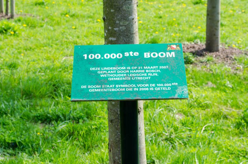 bordje 100000e boom