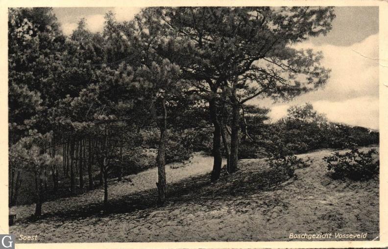 Soest, boschgezicht Vosseveld